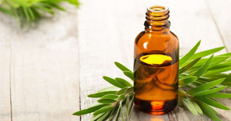 tea tree oil for a sore throat