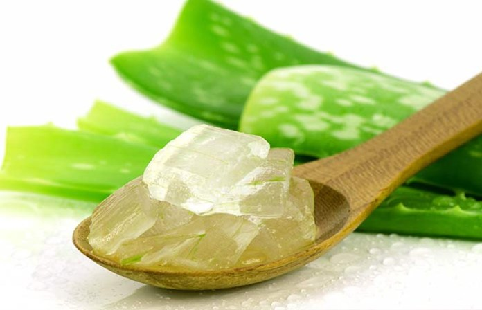 aloe vera gel for plantar warts