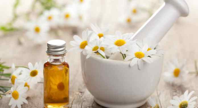 chamomile essential oil inflammation