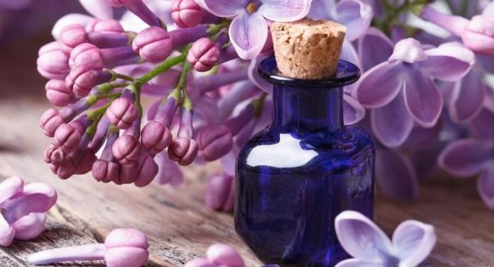lavender essential oil for heal black eye