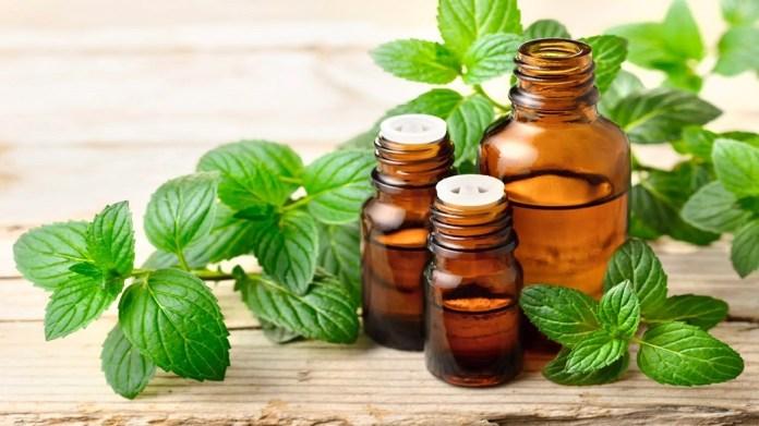 peppermint oil for burns