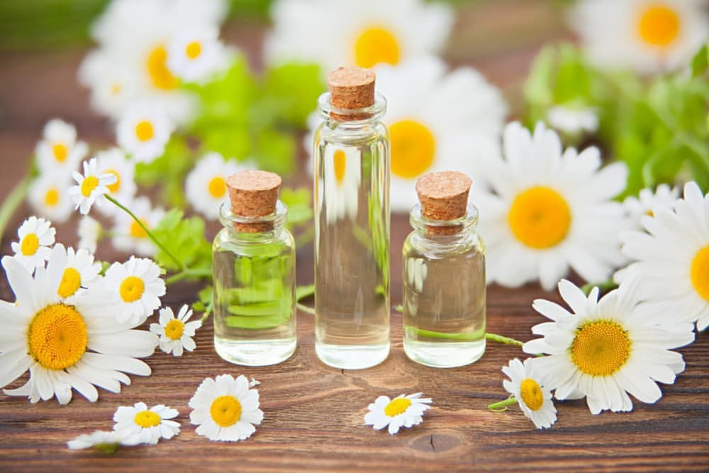 roman chamomile oil for cramps