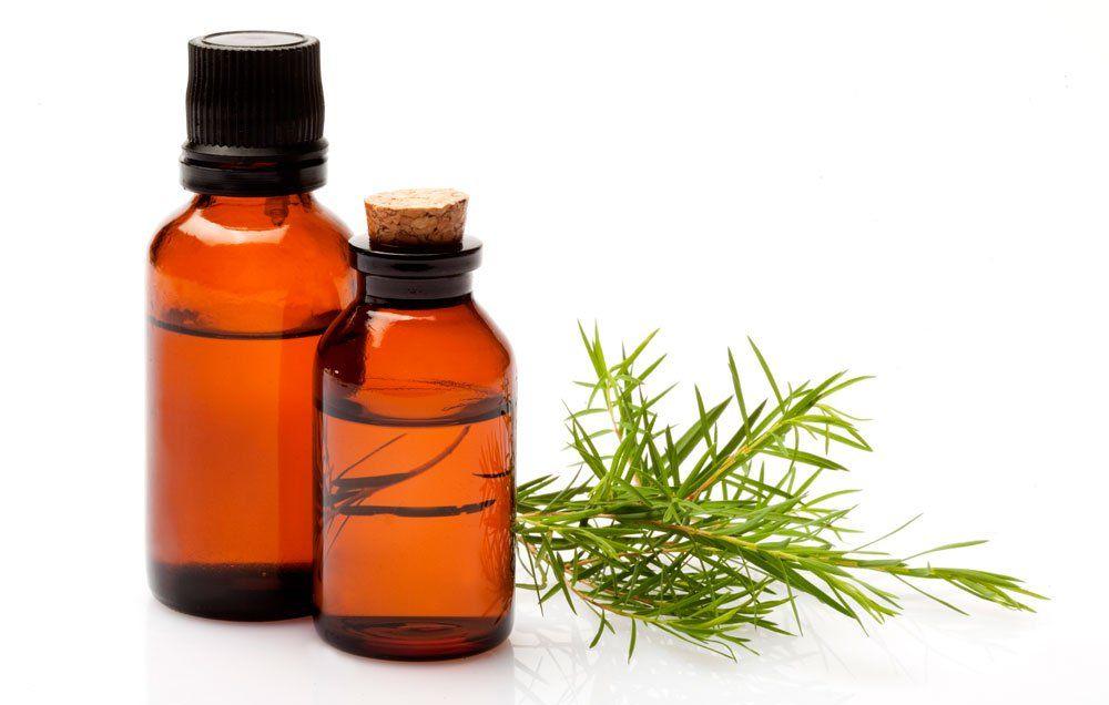 tea tree Oil for seborrheic dermatitis