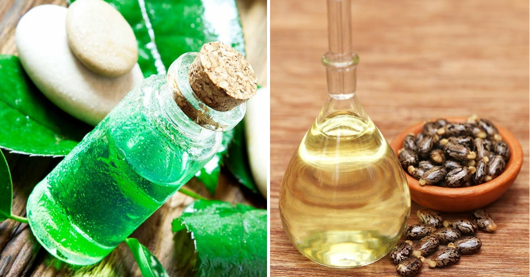 tea tree essential oil and castor oil for warts