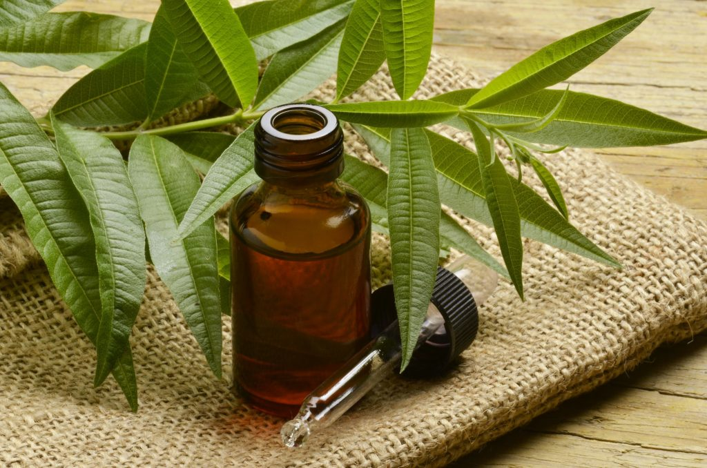 tea tree essential oil to cure stress
