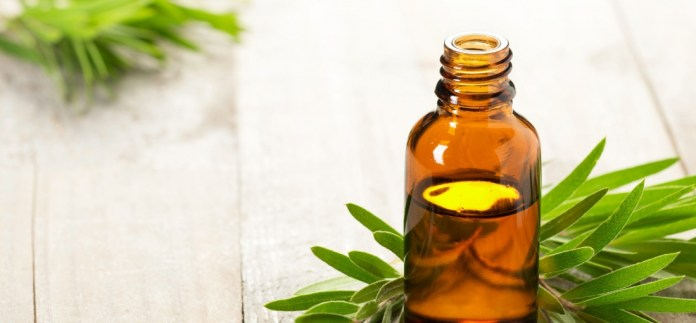 tea tree oil for clearing razor bumps
