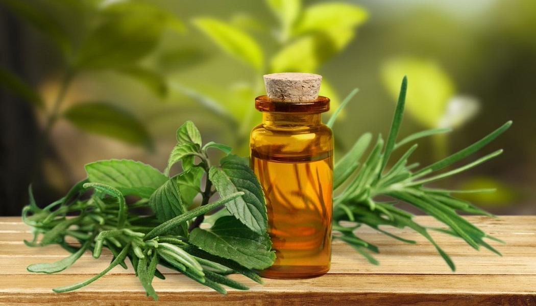tea tree oil for remove acne scars