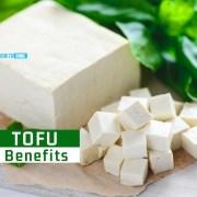 tofu benefits