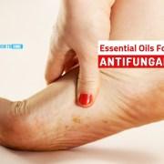 antifungal essential oils