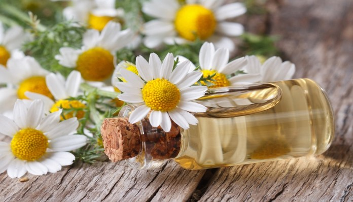 chamomile essential oil for bloating