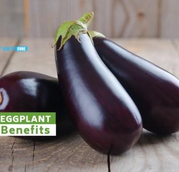 eggplant benefits