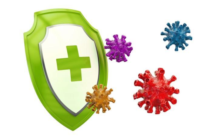immune system-min