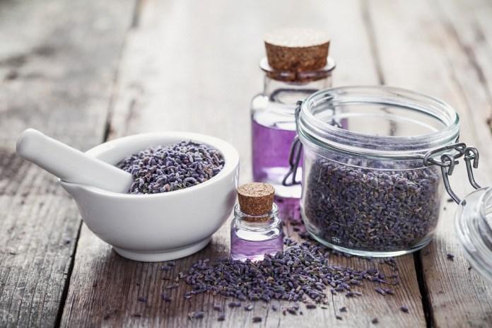 lavender essential oil for seasonal allergies