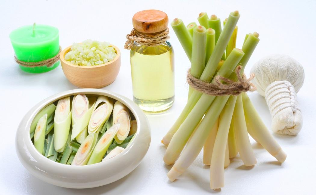 lemongrass essential oil for detox