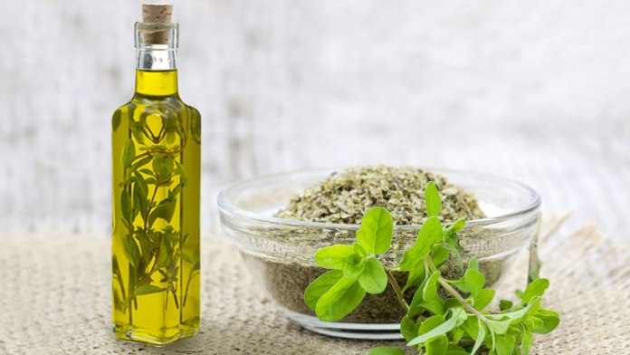marjoram essential oil for leg pain