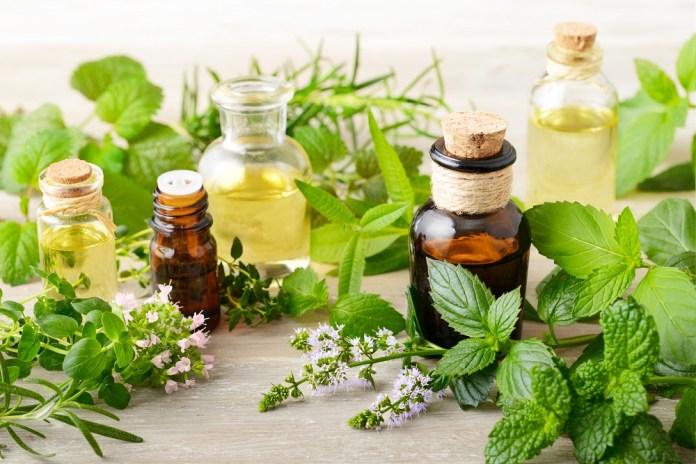 marjoram essential oil for neck pain