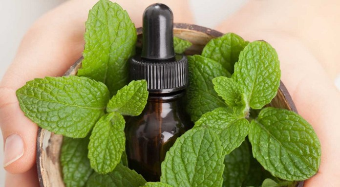 peppermint essential oil for bloating