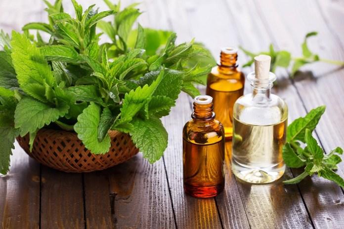 peppermint essential oil for sinus