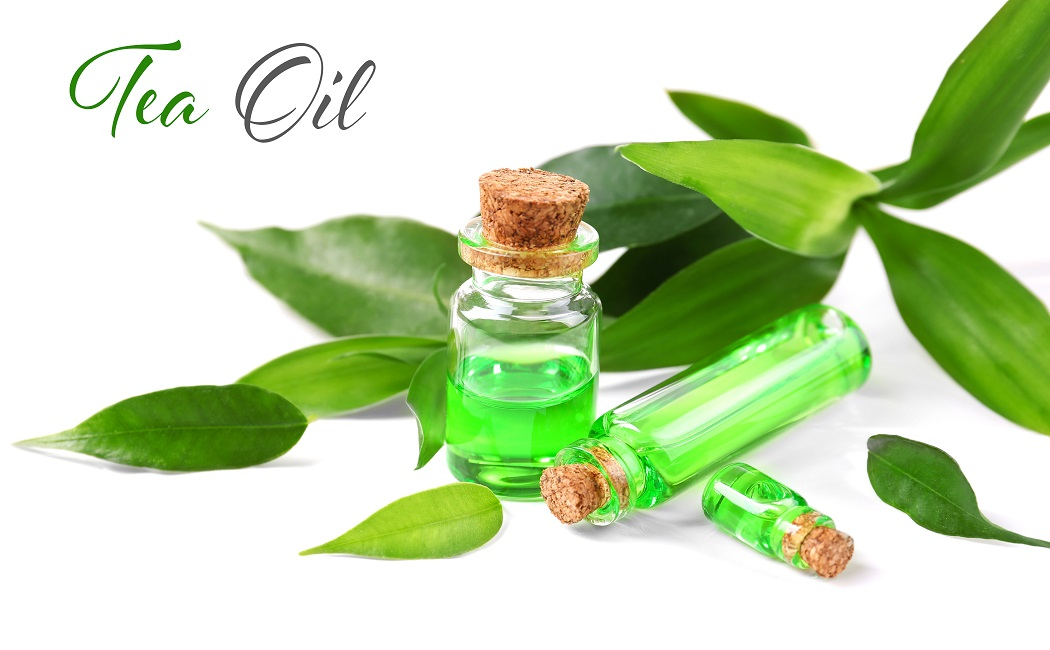 tea tree essential oil for fungal infections