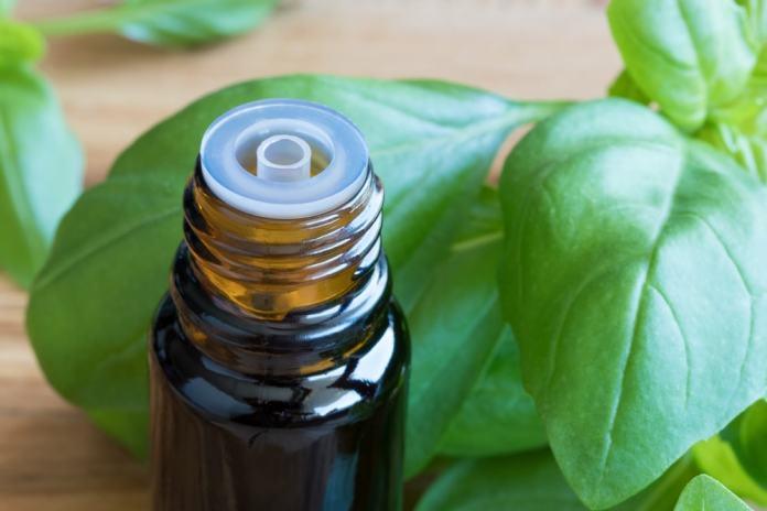 Basil oil-min
