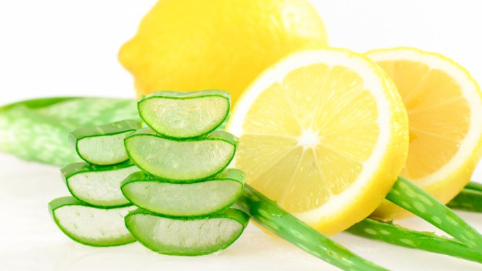 aloe and lemon for hair