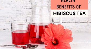 Hibiscus Tea Pregnancy How To Cure