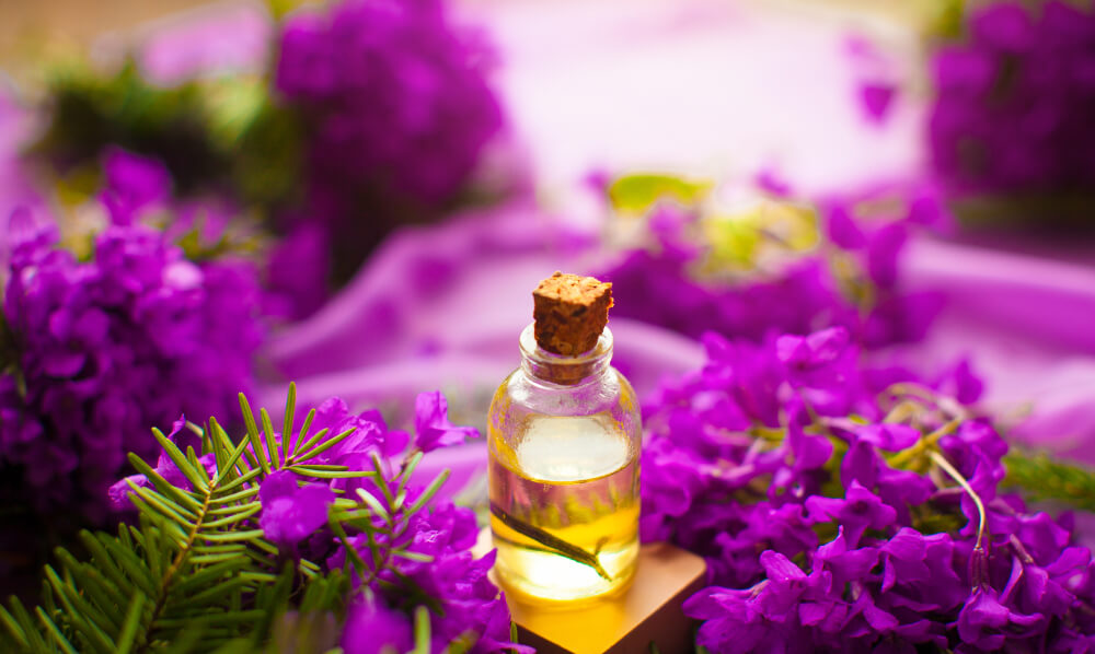 lavander oil for perianal abscess