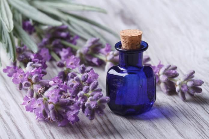 lavendar oil