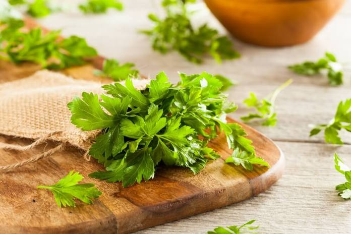 parsley (1)