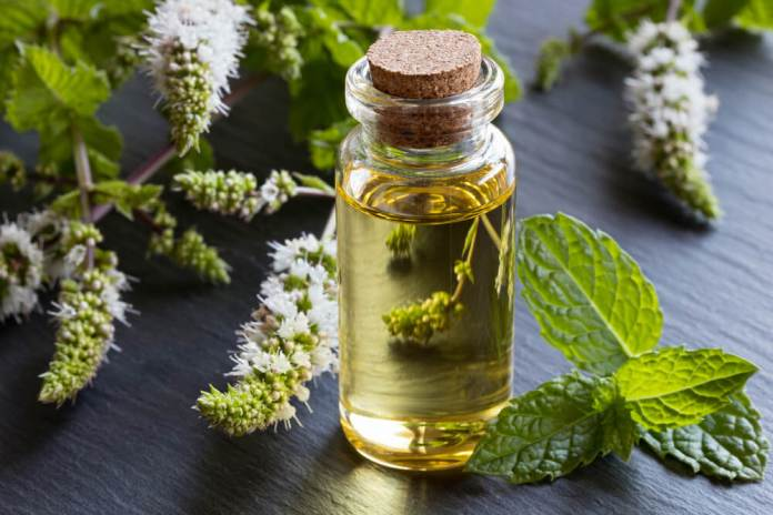 peperment oil (1)