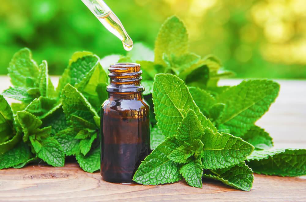 peperment oil