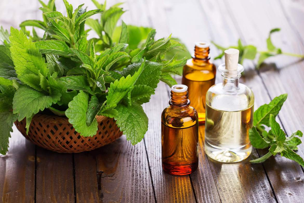 peppermint oil for hair growth