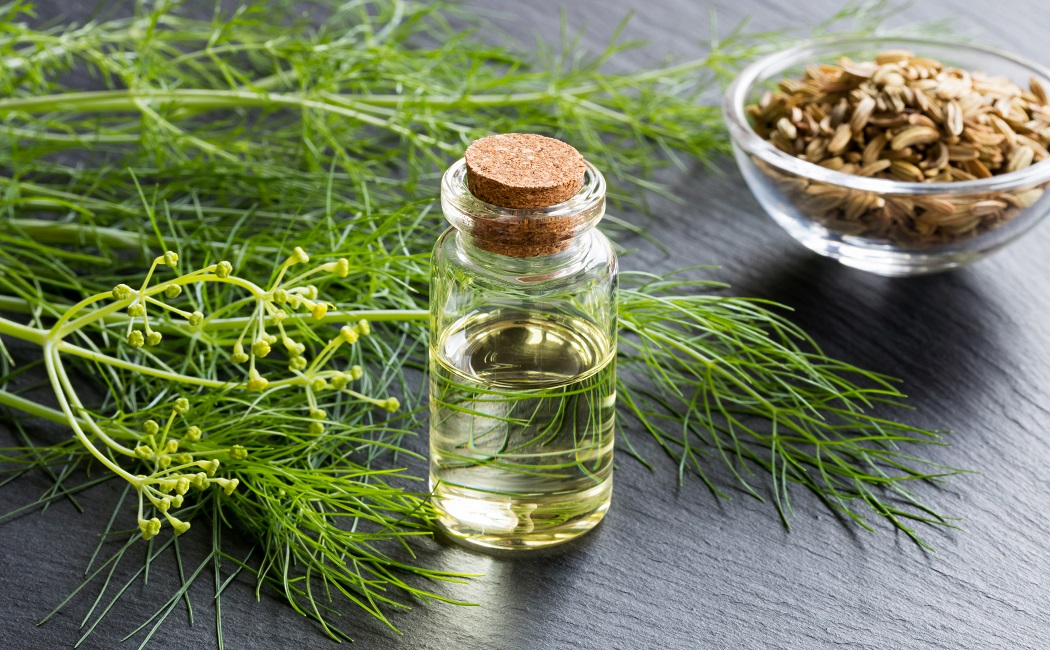 fennel-essential-oil