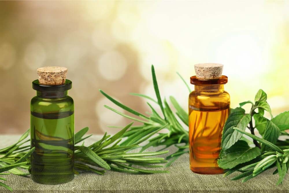Use Tea Tree oil for hair problems