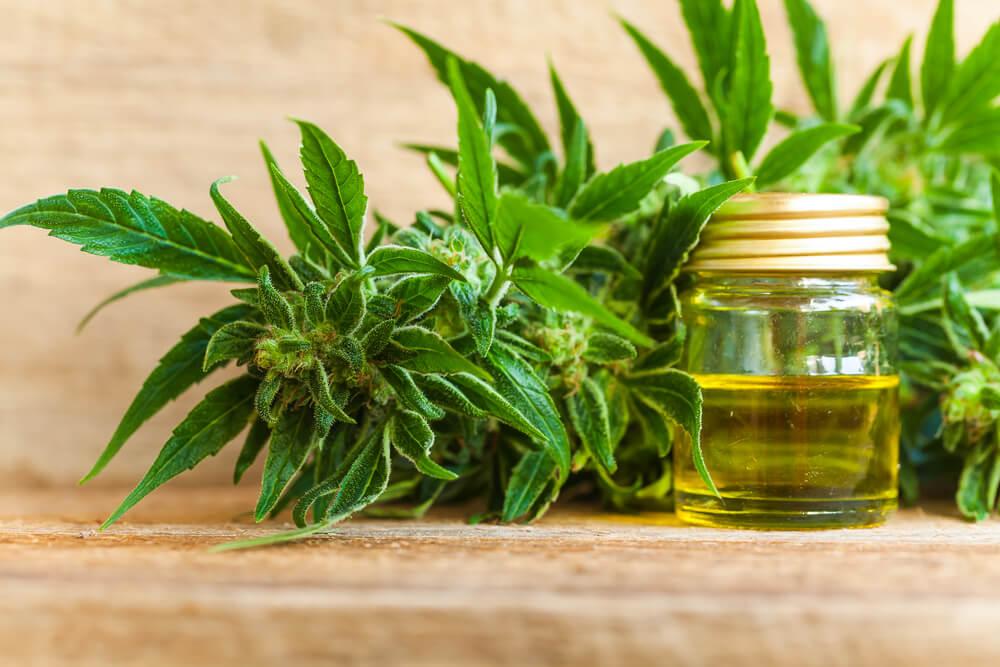 CBD oil cures Pain
