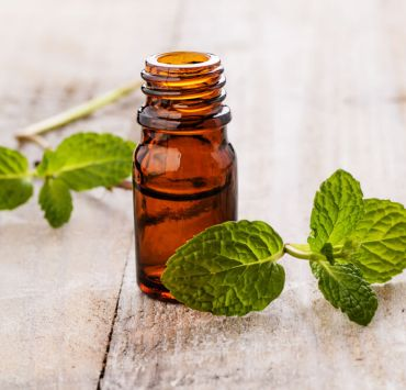 Peppermint Essential Oil Benefits