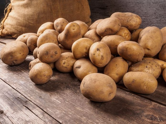 Potatoes for Spider Bites
