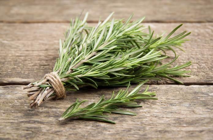 Rosemary for hair growth