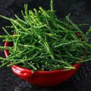 Benefits of Samphire