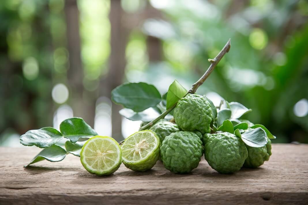 Kaffir Lime Benefits