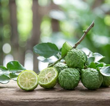 Kaffir Lime Benefits