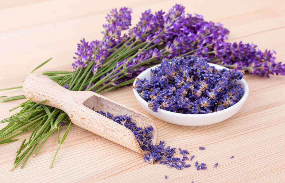 Lavender Herb for depression