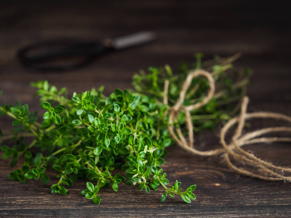 11 Effective Herbal Remedies to Soothe Cough | How to Cure