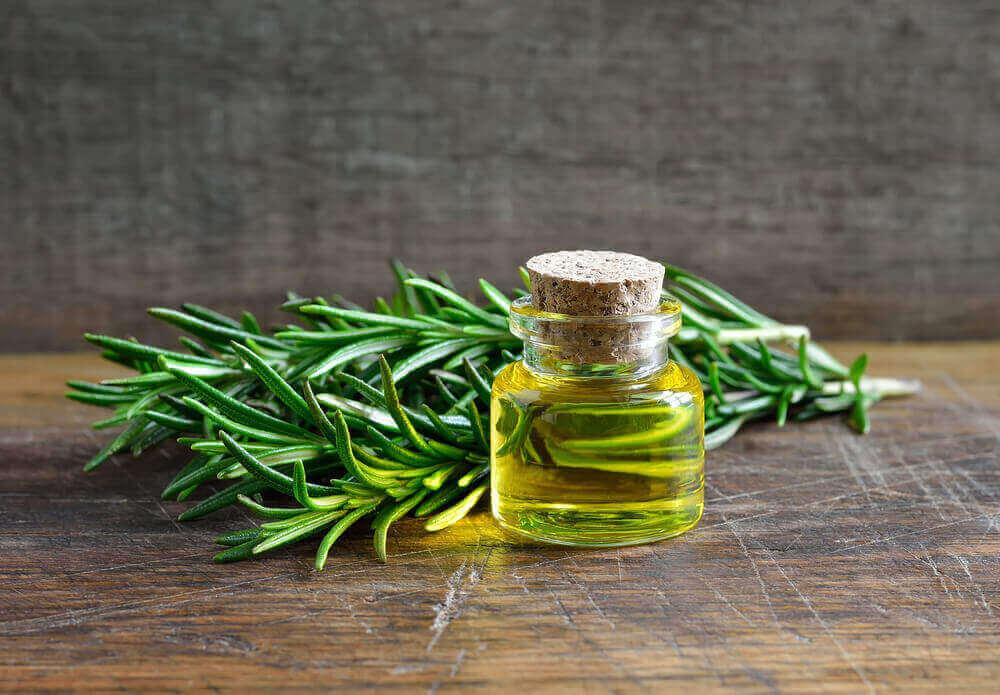 Rosemary Oil Benefits