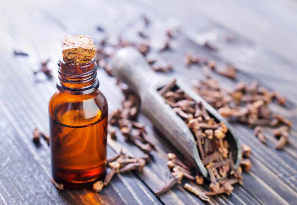clove bud essential oil benefits