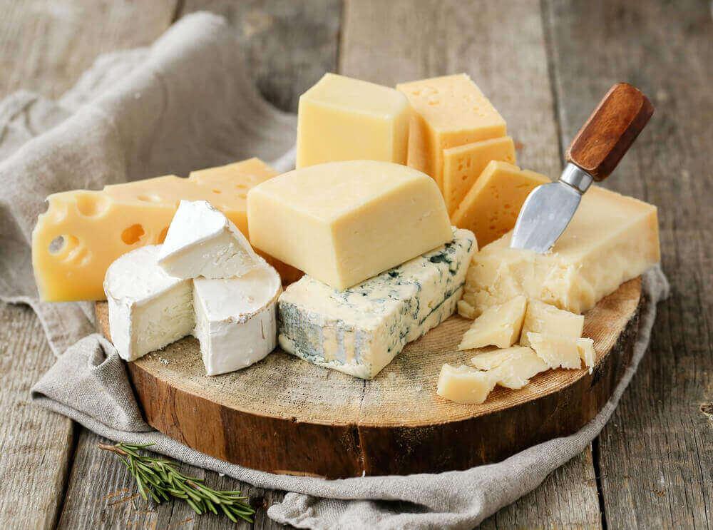 Cheese Benefits