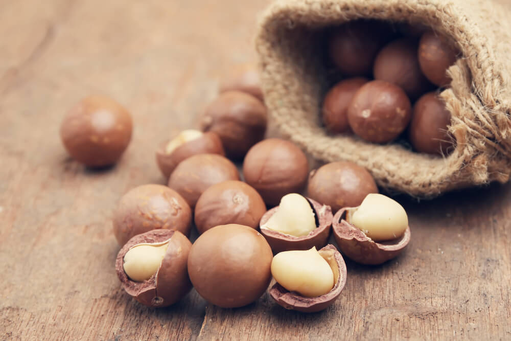 Macadamia nuts for weight loss