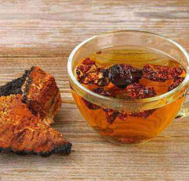 chaga tea benefits