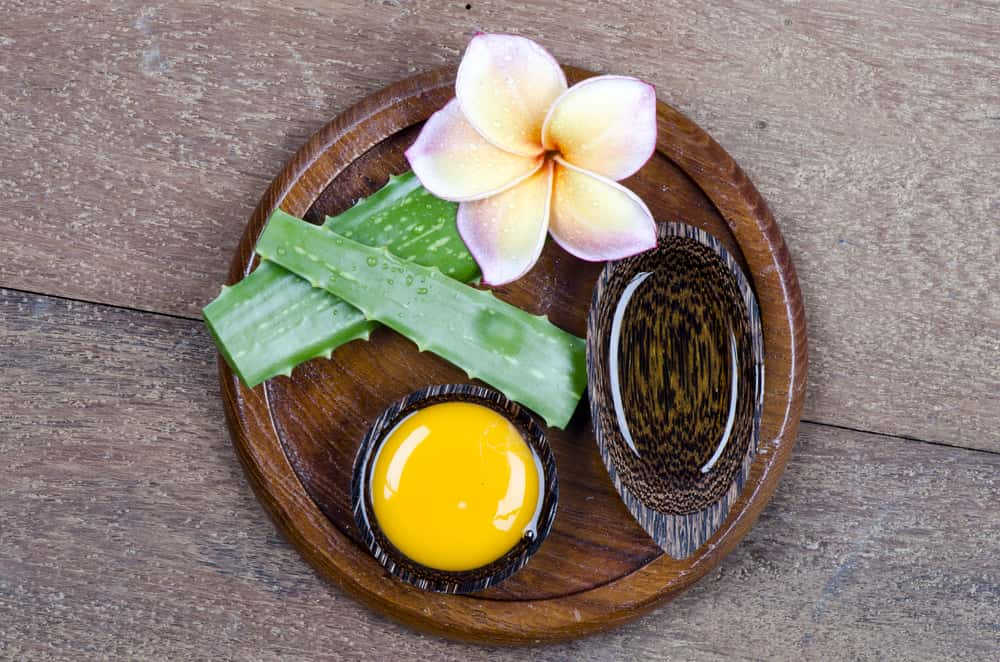 Egg+ Aloe Vera and Olive Oil
