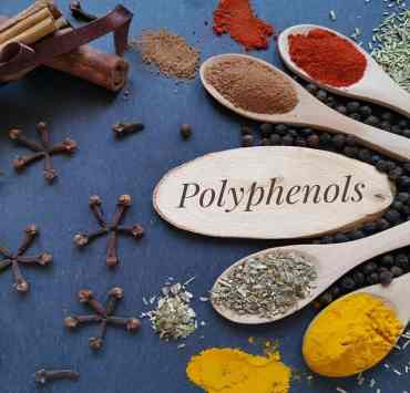 foods rich in polyphenols